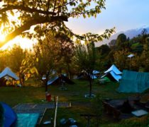 Camping and paragliding packages at Bir Billing himachal pradesh